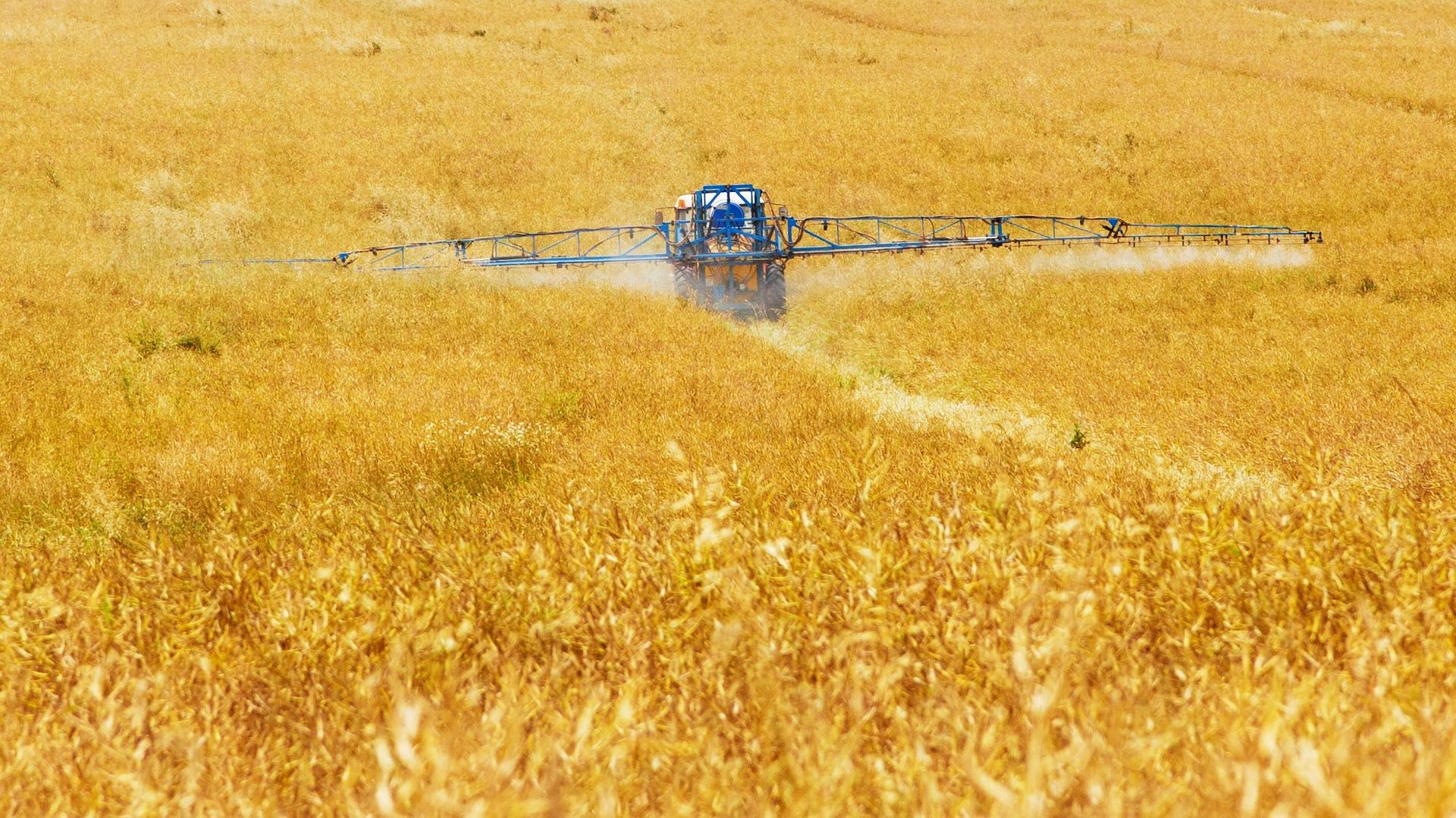 Pestizide hauen Bienen mit einem Doppelschlag um